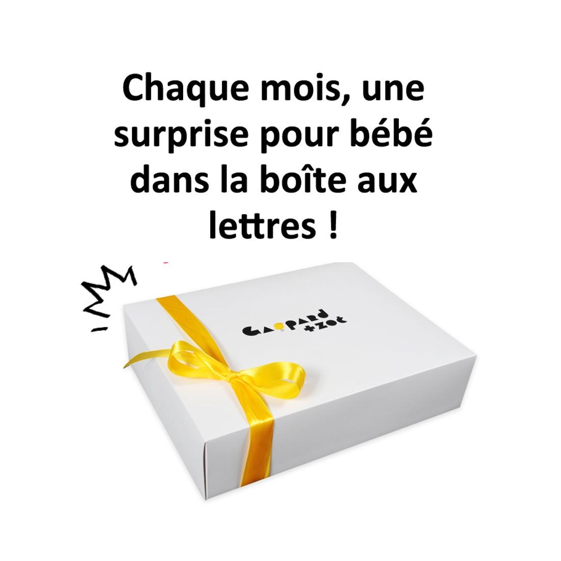 Boite surprise pour bébé - cadeau bébé créateurs - baby box