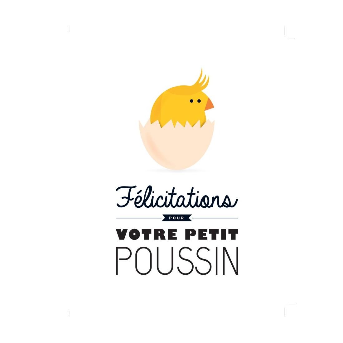 Carte de félicitations naissance Petit Poussin